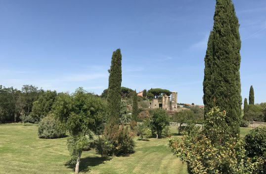 Thomas Romualdi – herre på täppan på kullen