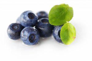 Gott om lingon – ont om blåbär
