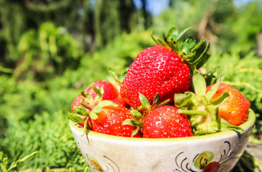 Jordbruksverket kollar jordgubbarnas ursprung
