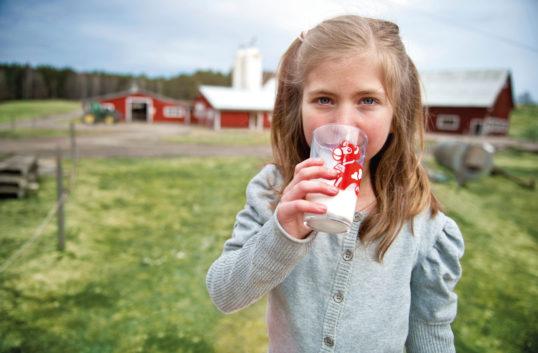 Mjölken globalt firad och Arla öppnar Minior