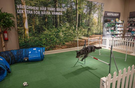 Dogman växer vidare – öppnar 30:e butiken